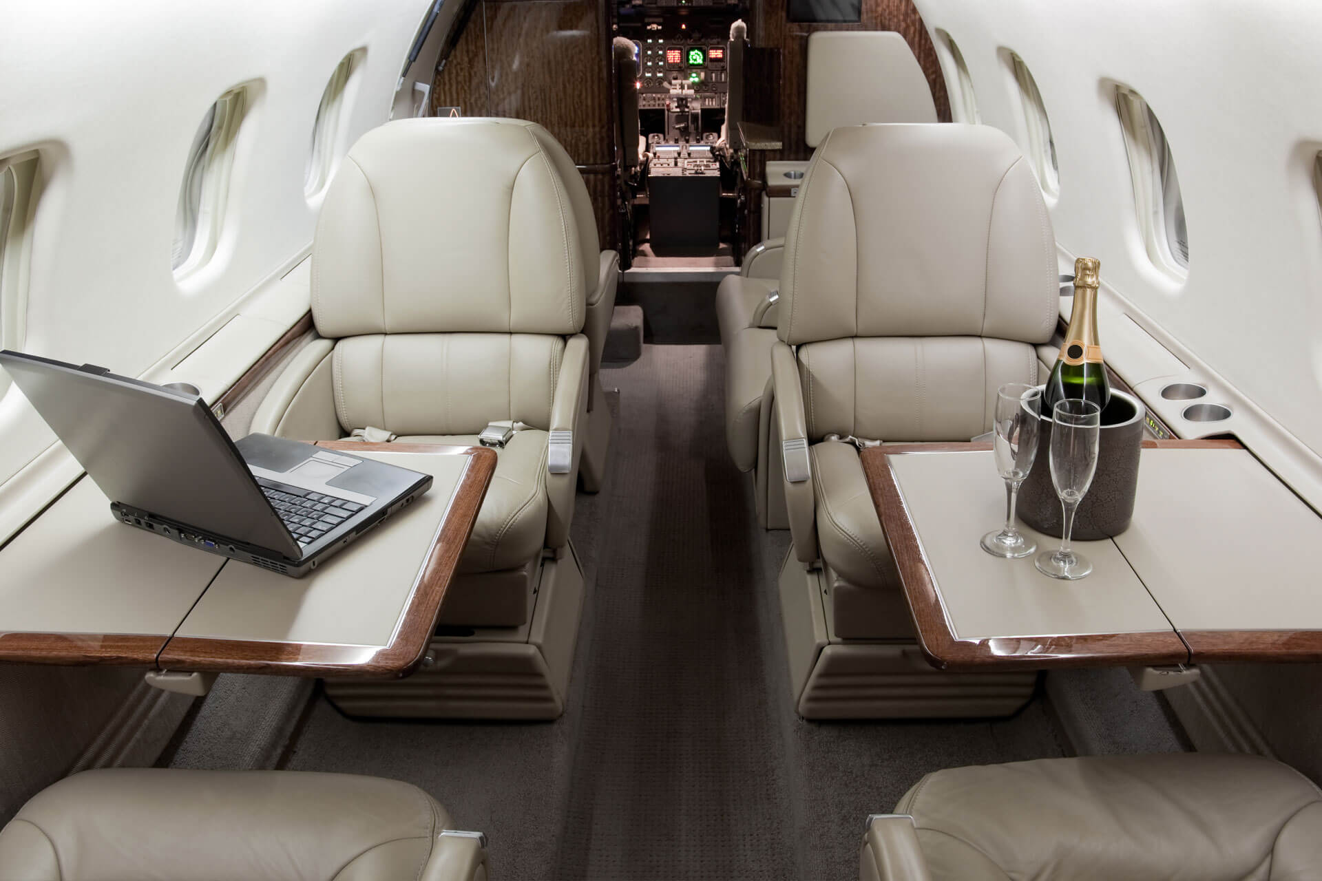 Business and leisure travel private jet